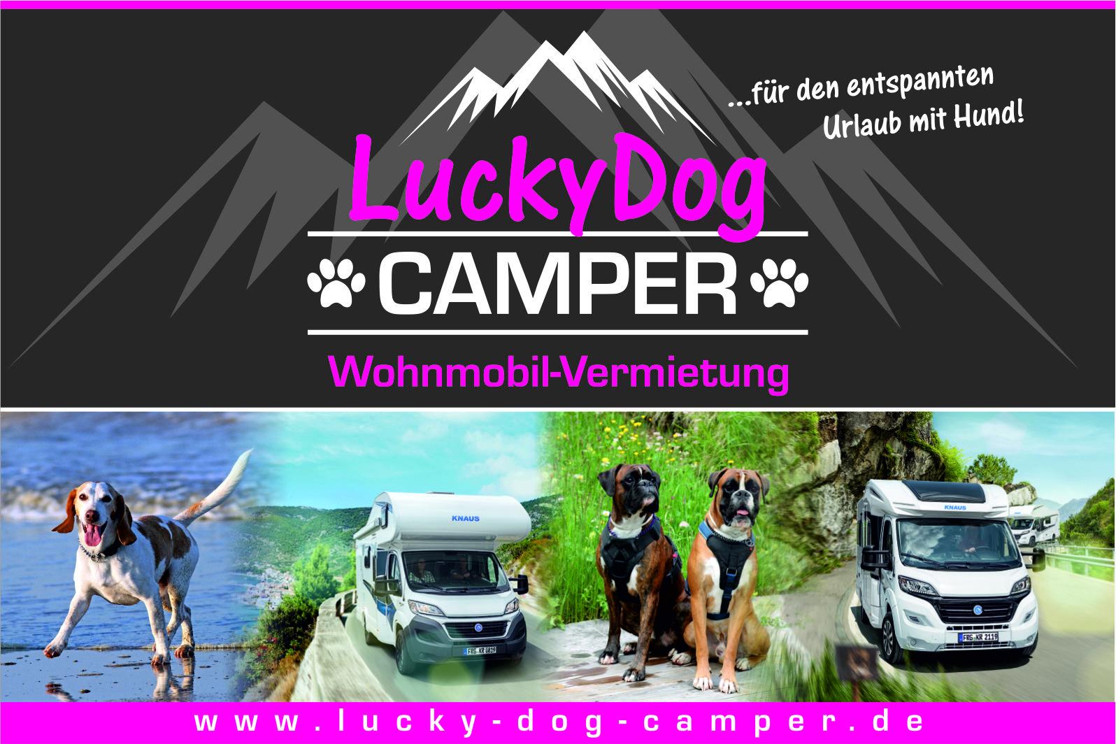 Lucky Dog Camper